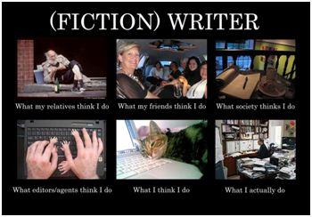 Fiction Writer
