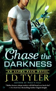 Chase the Darkness